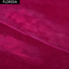ART-FLORIDA