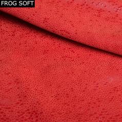 FROG-SOFT